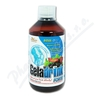 Geladrink Forte biosol černý rybíz 500ml