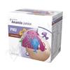 PKU Anamix Junior s př. čokoládovou por.plv.15x36g