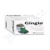 Gingio tablety por. tbl. flm. 100x40mg