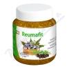 REUMAFIT kostivalov� gel s jalovcem+MSM 350g