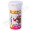 C-Vitamin 100mg - Med&šípek se sukralózou tbl.60