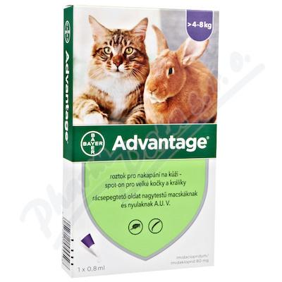 Advantage pro vel.kočky a králíky spot-on 1x0.8ml